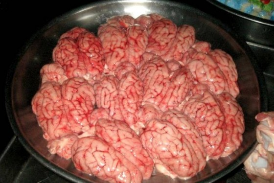 Zdjęcie konkursu na jedzienie krowich mózgów.