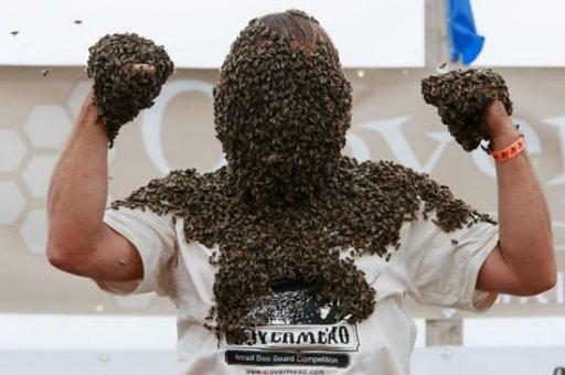 konkurs na najwieksza brode ze pszczół.
