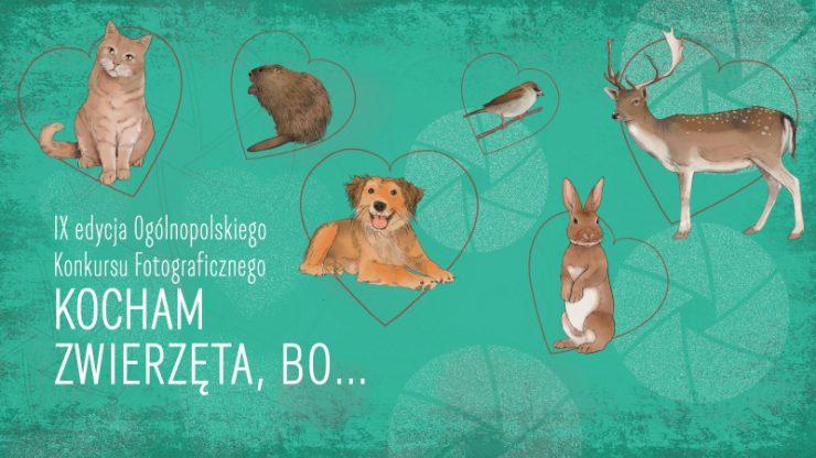 """Konkurs fotograficzny """"Kocham zwierzęta, bo..."""""""